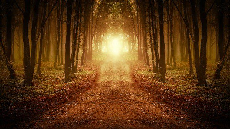Christian Mystical Experiences